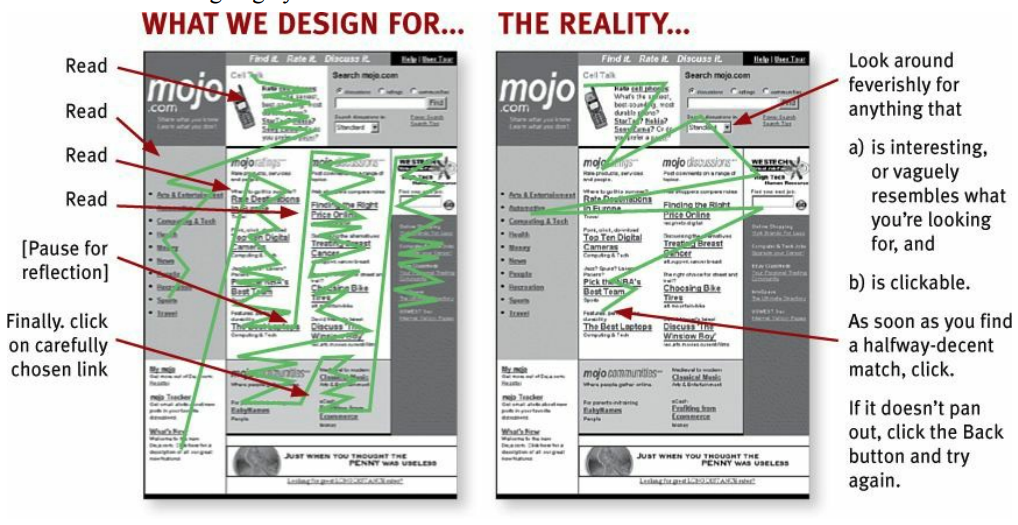 How we design a webpage versus how a user will really scan it. From (Krug 2014).